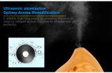 Shenzhen dituo aceite esencial de difusor de aroma humidificador ultrasónico de aire