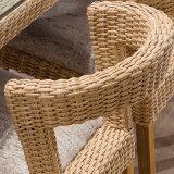 Fornitore semplice B03-9 del Guangdong della presidenza di spiaggia della mobilia del patio della mobilia del giardino del rattan di svago