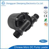 ロックされ回転子の保護の小型12V 24V DCの熱湯の循環ポンプ
