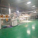 Fabrik-Großverkauf-Grün farbiger Polycarbonat-Zwilling-Wand-Höhlung-Vorstand