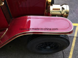 Rariro一等級のハンドメイドの金属板の電気型車