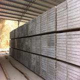 Comitati di parete prefabbricati isolati termici a prova di fuoco per il divisorio della costruzione
