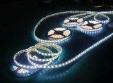 차가운 백색 색깔 세륨과 RoHS를 가진 유연한 SMD5050 LED 지구 빛