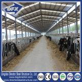 Edificio modificado para requisitos particulares de la vertiente de la granja de los establos del caballo de la estructura de acero de la luz del diseño
