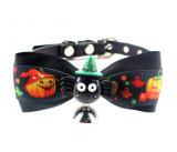 Collier de collier de chat de crabot de Noël et d'animal familier de Veille de la toussaint