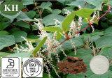 Geneesmiddelen Polygonum Cuspidatum Gehaalde Resveratrol van de Levering van de fabriek de Directe door HPLC