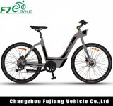 速い充満リチウム電池のFoldable都市電気バイク