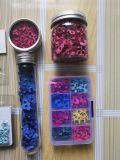 Kit ilhós Multi-Color Olhais de metal na caixa clara