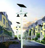 Im Freien LED-Solargarten-Beleuchtung für Landschaftshof-Yard-Haus