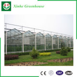 De landbouw Serre van het Glas Polytunnel met Landbouw Commercieel