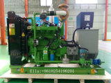30kw Biogas Plant Gas Engine Electric Generating Set