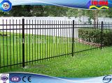 Barriera di sicurezza d'acciaio del metallo di alta qualità per il giardino (FLM-FN-003)