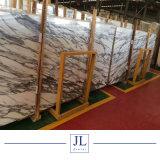 자연적인 Stone 이탈리아 Marble Arabescato White Slabs