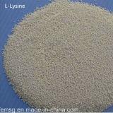 L La lisina HCl alimentar a un 98,5% grado proveedor