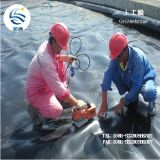 Fabricante LDPE HDPE plástico compuesto geomembrana