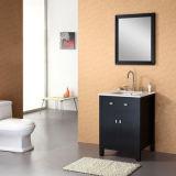 De Eenheid van de Ijdelheid van het Meubilair van de badkamers (x-038)