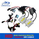 H3 H8 H11 H14 35W 55W OCULTADO Kit del xenón Báscula delgada Luz del Xenón Parte delantera del automóvil