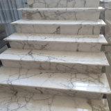 고대 작풍 백색 대리석이 이탈리아 Calacatta 대리석 채석장 공장 대리석에 의하여 값을 매긴다