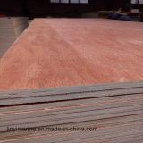 Pegamento impermeable de la base del álamo del grado de la madera contrachapada BB/CC de la cara de Bintangor