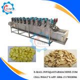 Machine de séchage d'Airfan de gingembre de gingembre à deux lignes de dessiccateur