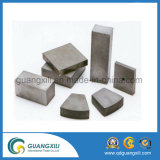 Het grote Kobalt SmCo van het Samarium voor Magneet