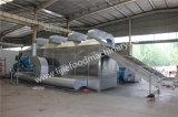 Essiccatore del contenitore di aria calda Dryer/SUS 304 della cinghia della maglia del cavolo/cipolla/carota