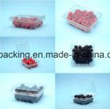 Bandeja del alimento del empaquetado de carne de los PP EVOH de la barrera de la muestra libre del fabricante de China alta