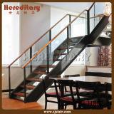 Alambre de acero inoxidable exterior / Cable de la escalera para la decoración (SJ-H4005)