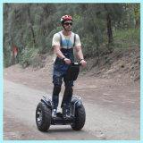 L'equilibrio di auto si leva in piedi in su un motorino elettrico delle 2 rotelle
