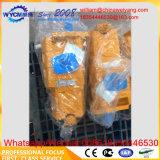 Werkende Pomp 4120008462 van de Lader van het Wiel van Changlin van Sdlg voor Verkoop