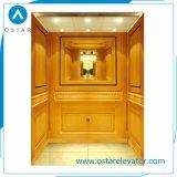 Prezzo dell'elevatore dell'elevatore della villa con il portello di apertura manuale