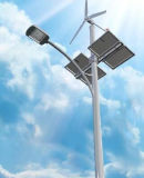 40W LED con gli indicatori luminosi di via ibridi Vento-Solari per 8m Palo