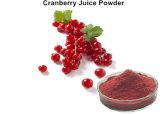 Чистый Cranberry выжмите сок из порошка для функции продуктов питания