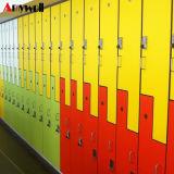 De nieuwe Kast van de Gymnastiek HPL van de School van het Ontwerp/van het Centrum van het Bad Phenolic Goedkope