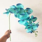Phalaenopsis Flores artificiais para a decoração do escritório doméstico