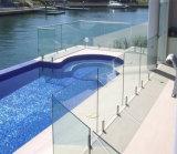 別荘の家のプールの塀のステンレス鋼のガラス柵デザイン