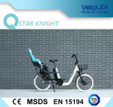 "Unfoldable 20명의 "" 250W Akm 모터를 가진 여자 전기 자전거"