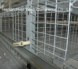 Galvanisation automatique Broiler Chicken Cage (H Type)
