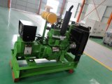 30квт биогаза генераторах/газогенератор, 4105 двигатель экспорт в Россию