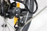 Bike батареи иона лития колеса мотора складывая карманный, электрический велосипед (JB-TDN01Z)