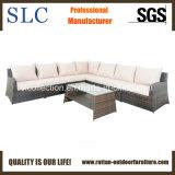 Sofà sezionale stabilito dell'hotel della mobilia del patio del sofà di vimini stabilito del rattan (SC-3005-B)
