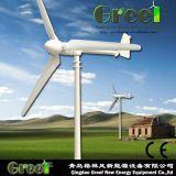 Piccola turbina di vento orizzontale di asse della turbina 300W con Ce
