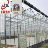 De Serre van het glas voor het Groeien van de Bloem met de Structuur die van het Staal wordt gebruikt