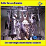 Halal 도살 가축 도살 장비