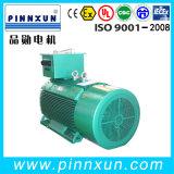 Baixos RPM motores elétricos do torque elevado assíncrono