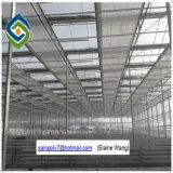Folha do PC/policarbonato/Turnel/Glassgreenhouse para Growing de flor