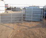 5ftx10FT 직류 전기를 통한 강철 가축 가축 우리 위원회