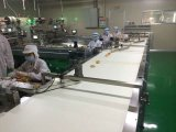 Fabricante Zp500 de China de la máquina del envasado de alimentos de la alta calidad