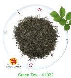 El té verde 41022
