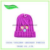 Chapéu cor-de-rosa do Knit do inverno do bordado das crianças da forma